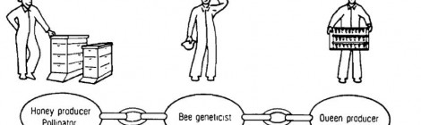 Bee Breeding